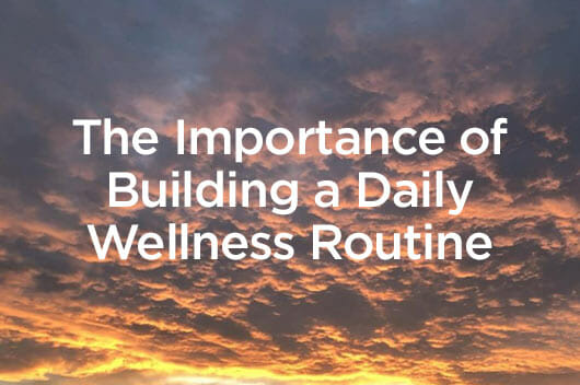 Building a Wellness Routine